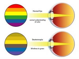 buta warna mata anak